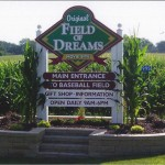 Niagara - Field of Dreams